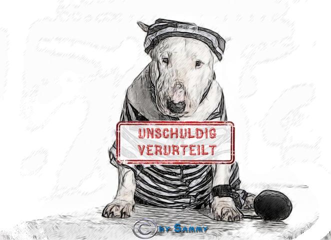 werden hunde in hamburg kontrolliert